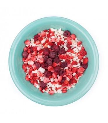 Frutas de ensueño liofilizadas